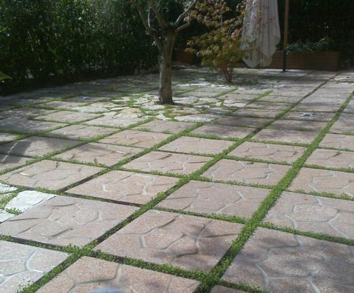 Ricci manufatti creazioni in cemento - Pavimentazione giardino senza cemento ...